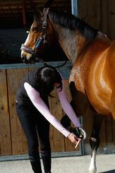 Dennenteer zwart paarden en pony's 1 l - 424004