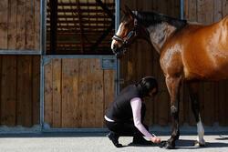 Zwarte hoefzalf voor onderhoud ruitersport paarden en pony's 500 ml - 424007