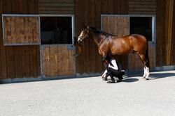 Zwarte hoefzalf voor onderhoud ruitersport paarden en pony's 500 ml - 424010