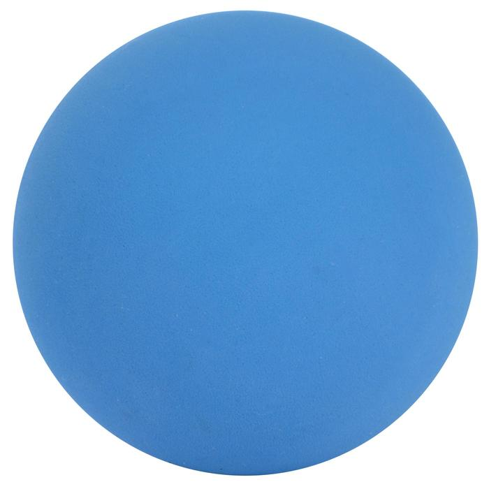 Balle de FRONTENIS ARTENGO 830 FRONTBALL X 2 Bleu - 425976