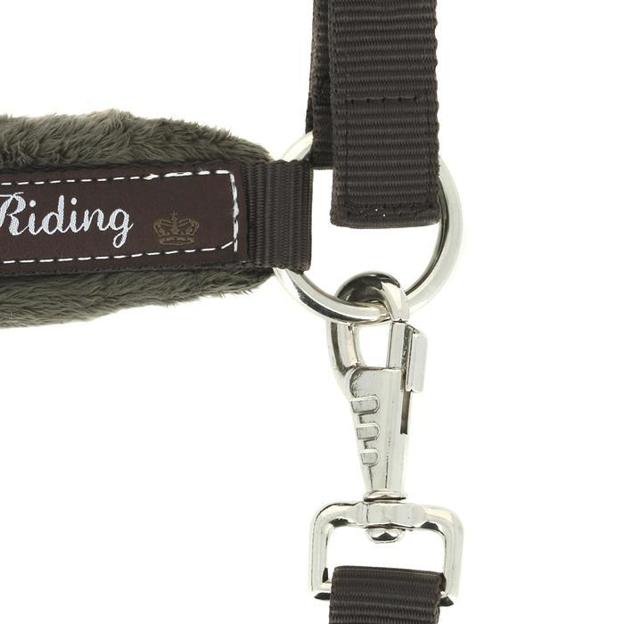 Licol + longe équitation poney et cheval WINNER - 430837