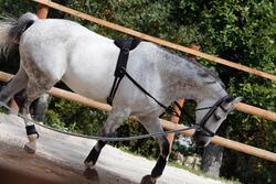 Werksingel ruitersport zwart voor pony's en paarden - 437828