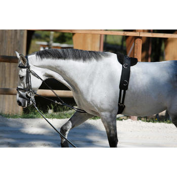 Longiergurt Pony/Pferd schwarz