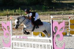 Zadeldek Grippy ruitersport - paard - 438847
