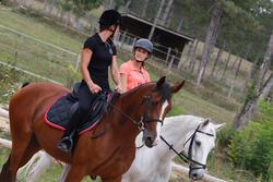 Zadeldek Grippy ruitersport - paard - 438851