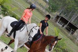 Zadeldek Grippy ruitersport - paard - 438853