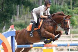 Hoofdstel + teugels Tinckle ruitersport bruin - pony en paard - 438953