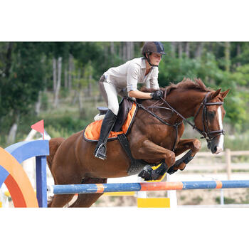 Filet + rênes équitation cheval et poney TINCKLE marron - 438953