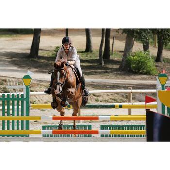 Filet + rênes équitation cheval et poney TINCKLE marron - 438955