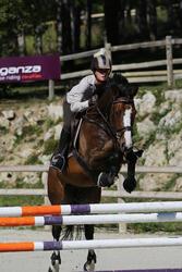 Hoofdstel + teugels Tinckle ruitersport bruin - pony en paard - 438956