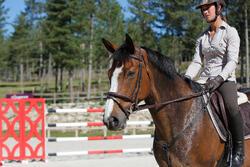 Hoofdstel + teugels Tinckle ruitersport bruin - pony en paard - 438958