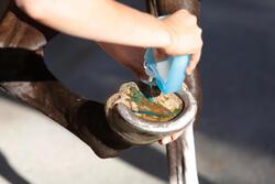 Hoefstraalverzorger ruitersport paarden en pony's 250 ml - 441825