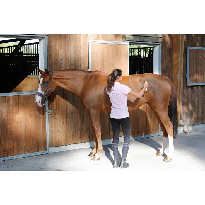 Loção Brilhante Equitação Cavalo e Pónei 250 ML