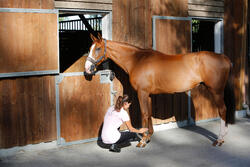 Verkoelende gel ruitersport paarden en pony's COOL GEL 500 ml - 441835