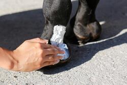 Huidverzorging Skin'Protect - 500 ml - 443276