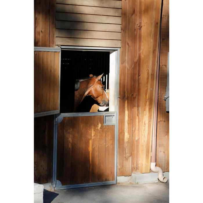 Salzleckstein Pur Fougasalt für Pferd und Pony 5kg