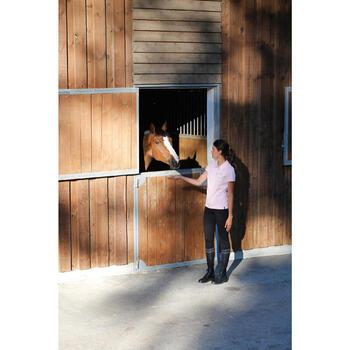 Golosinas para caballos y ponis FOUGASNACK manzana - 200 G