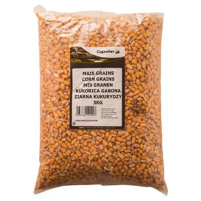Graines sèches pêche de la carpe MAÏS non cuit 3 KG