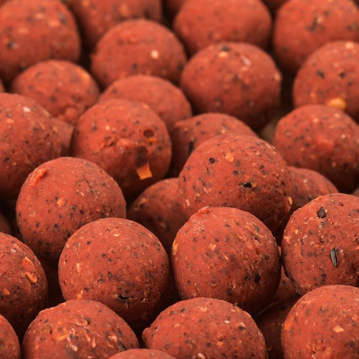 BOUILLETTES PÊCHE DE LA CARPE NATURAL BOILIES 20MM - 449111