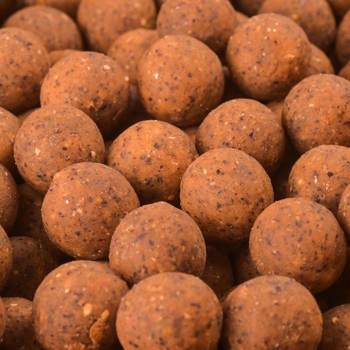 BOUILLETTES PÊCHE DE LA CARPE NATURAL BOILIES 20MM - 449114