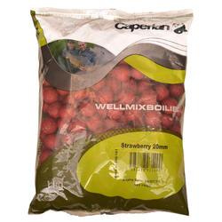 Boilies lokaas karpervissen Wellmix Boilies 1 kg - 449135