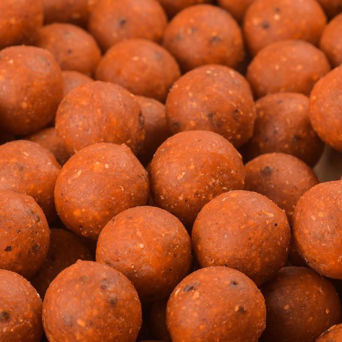 Bouillettes pêche de la carpe WELLMIX 10 kg - 449178