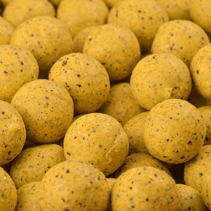 Bouillettes pêche de la carpe WELLMIX 10 kg - 449205