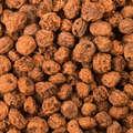 MOMELI CRAP Pescuit - Alune Tigrate 10/14mm 5kg CAPERLAN - Nade, Echipament nadire