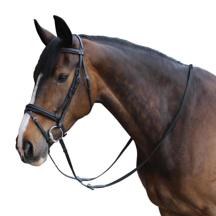 Filet + rênes équitation cheval et poney EDIMBURGH - 452097
