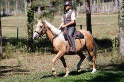 Herenrijbroek met rechte pijpen jeans zwart - 453387