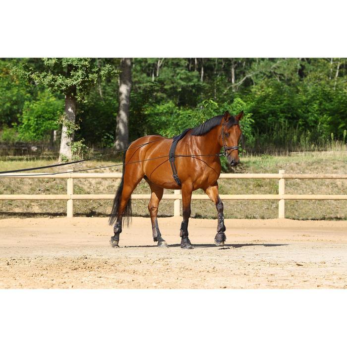 Longues rênes équitation noir - 458434