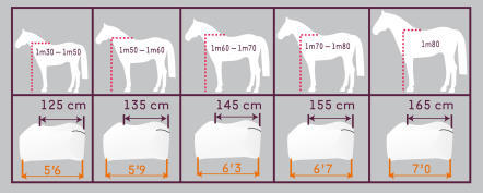 comment%20choisir%20taille%20couverture%20cheval.jpg