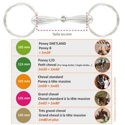 Filete de oliva hueco de acero inoxidable equitación poni y caballo