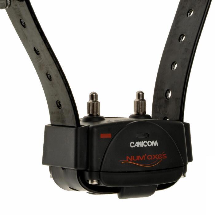 Africhthalsband Canicom 250 LE