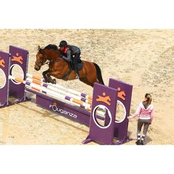 Leren singel met buikbescherming ruitersport pony en paard Romeo zwart