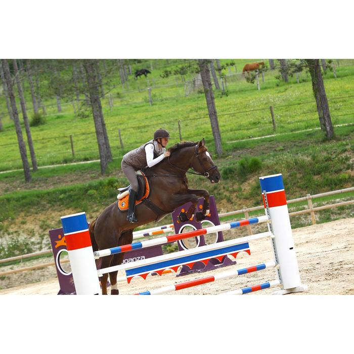 Leren singel met buikflap Romeo ruitersport pony en paard bruin