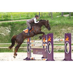 Cincha faldón cuero equitación poni y caballo ROMEO marrón