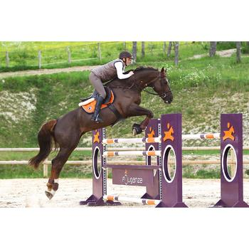 Sangle bavette cuir équitation poney et cheval ROMEO - 525159