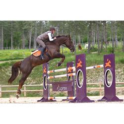 Cincha con faldón de cuero equitación poni y caballo ROMEO marrón