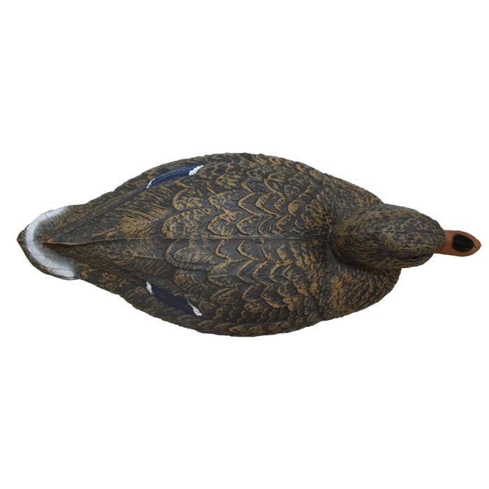 Forme chasse colvert femelle - 532070