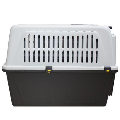 Caisse transport pour chien taille XL