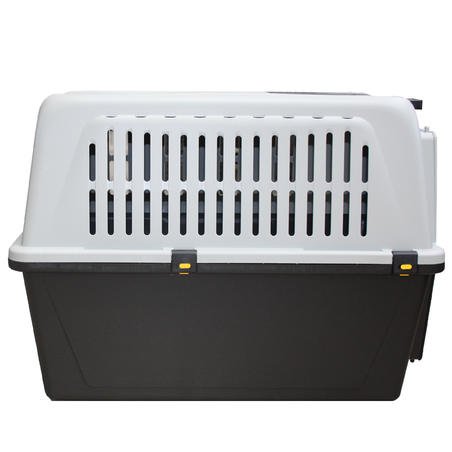 HUNTING DOG TRANSPORT BOX SIZE XL