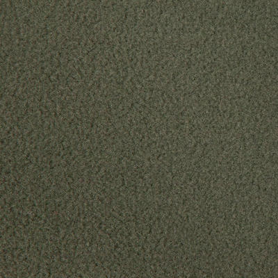 Polar Solognac 100 Adulto Verde
