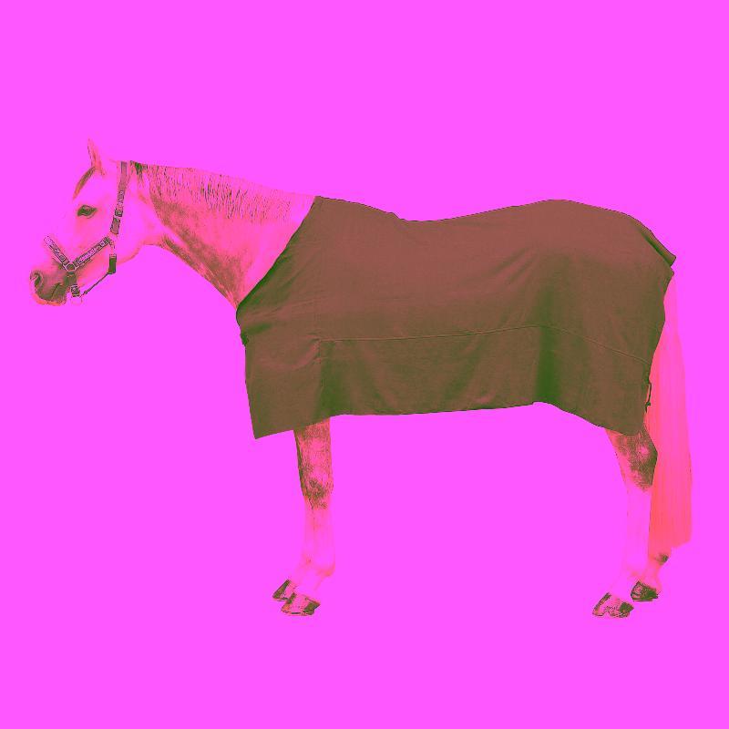 Manta delgada secante de equitación para poni y caballo gris
