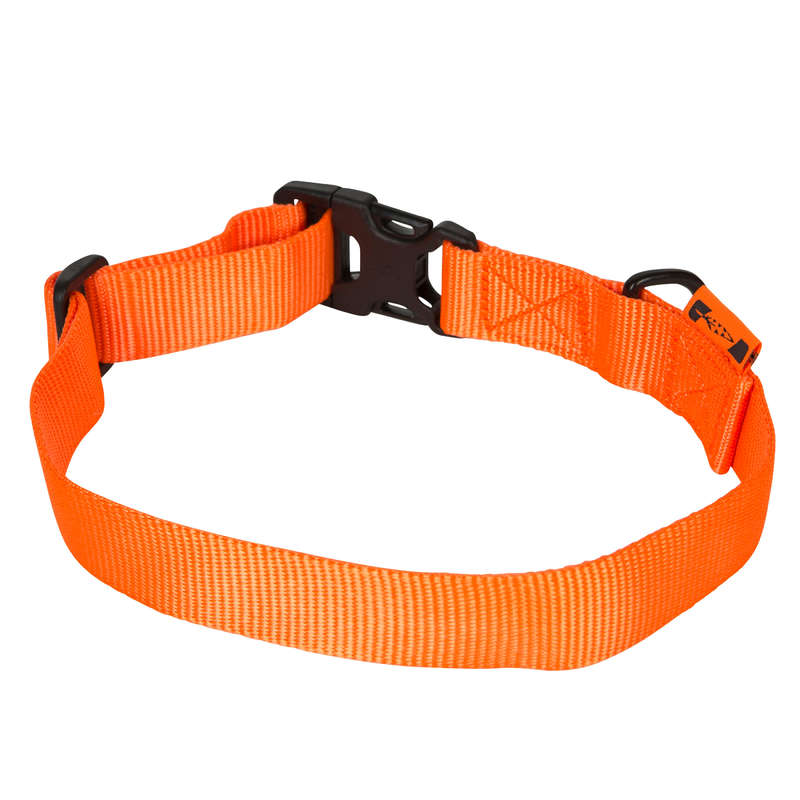 DOG ACCESSORIES Shooting and Hunting - 100 dog collar orange SOLOGNAC - Working Dogs