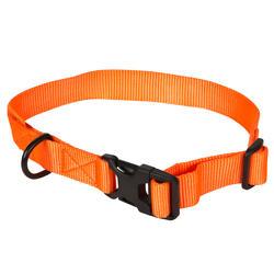 Collar Perro Caza Solognac 100 Ajustable Naranja Fluo
