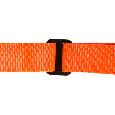 Collier chien 100 orange