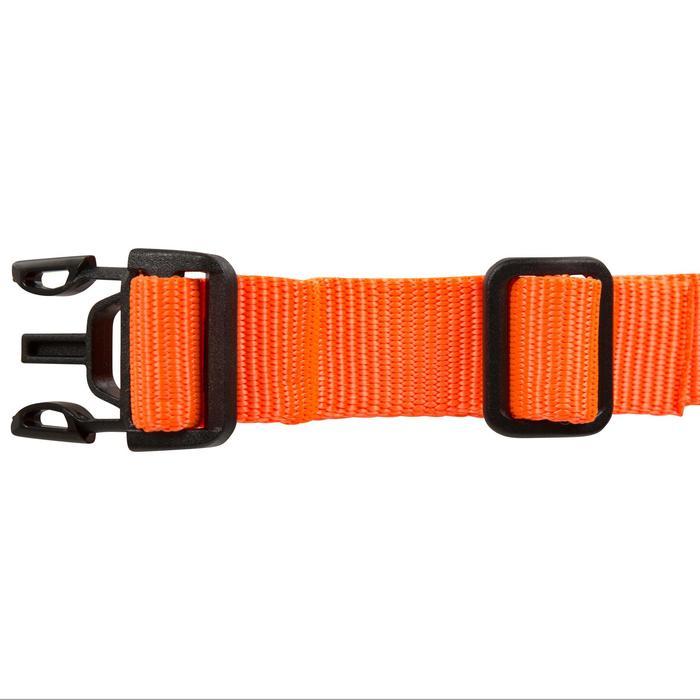 Collier chien 100 - 602348