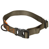 Dog collar 100 - Green