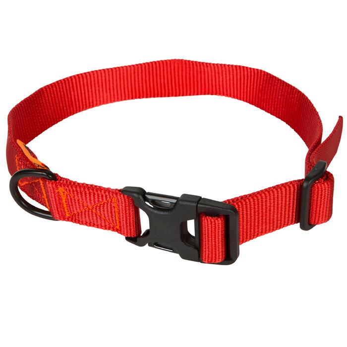 Collar perro 100 Rojo